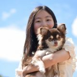 犬や猫の涙やけの原因とケアや対策