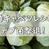 【世界一受けたい授業】酢キャベツレシピ紹介!デブ菌を減らせ!?腸内リセット!