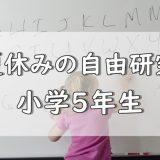夏休み自由研究小5
