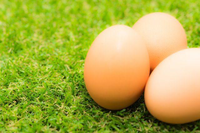 レンジで目玉焼きを作る方法 卵