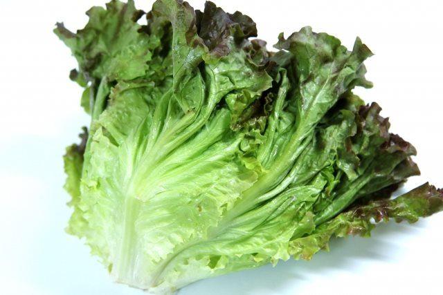 葉酸を含む野菜の食べ方を紹介します。サニーレタス