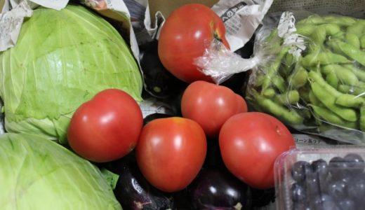 人気の野菜宅配便お試しセット5社を比較!お得なおすすめ野菜セットを紹介!